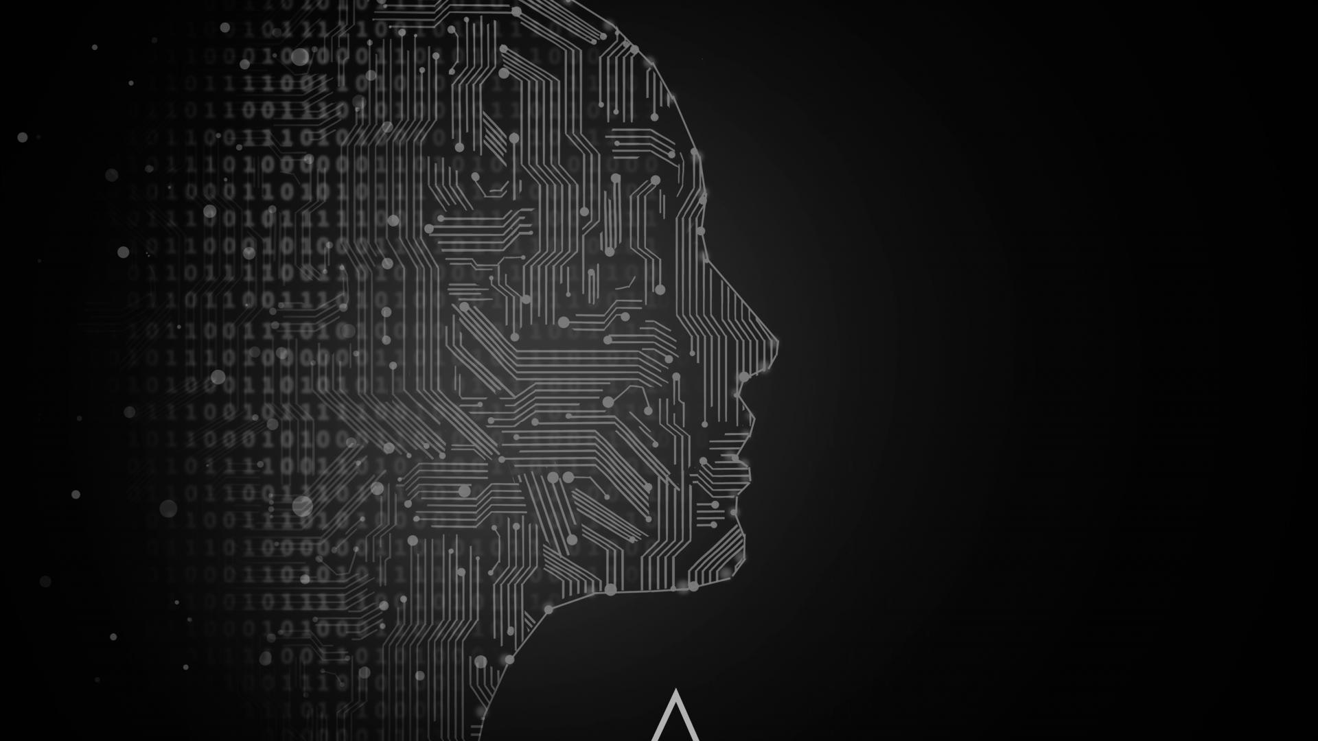 Nanook: el Data Driven y la Inteligencia Biométrica en Eventos